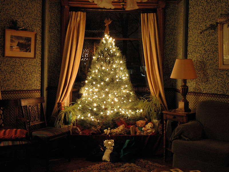 Christmas Tree aglow in tiny white lights at night in front of picture window.