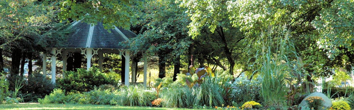 Wooden gazebo surrounded by trees and plants in late summer garden with tall grasses, mounds of mums, and leafy trees.